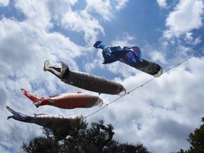 長野県民限定プランは今月土日限定でございます。
