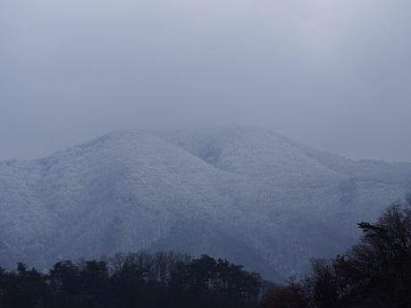 雪が舞いました。降りました。